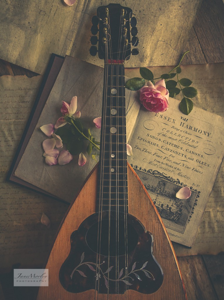 Still Life - Mandolin Music Boook & Roses 2