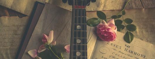 Still Life - Mandolin cropped for website